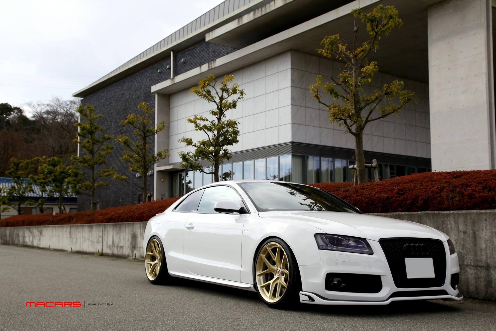 Audi A5/B8 2.0TQ Coupe