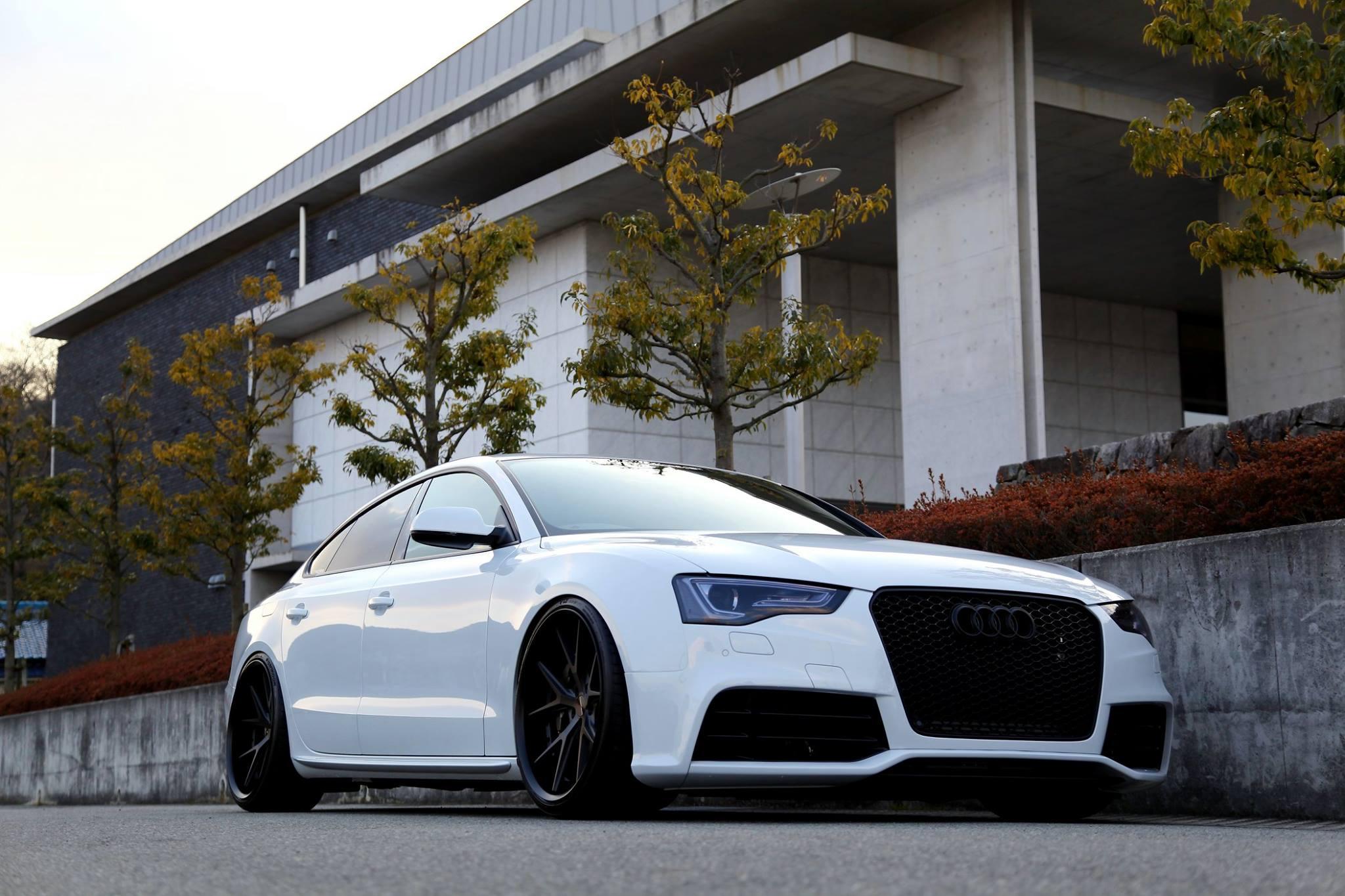 Audi A5/B8.5 2.0TQ SB